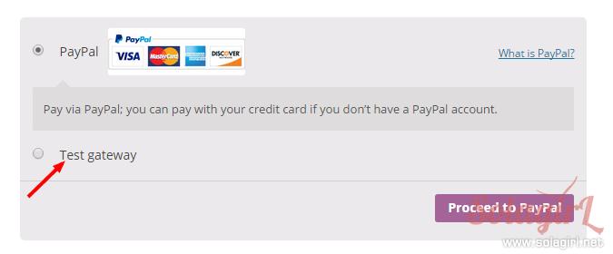 WooCommerce站点付款页面样式在线测试插件:woocommerce-test-payment-gateway-plugin