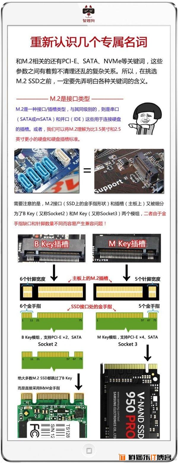 M.2/PCI-E/NVMe/SATA是什么?SSD硬盘常用接口详解