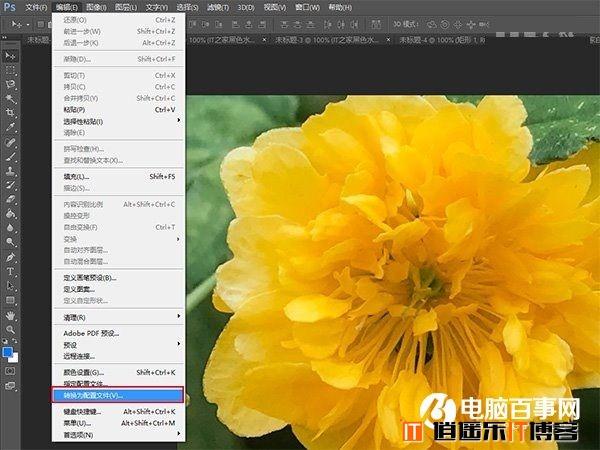 Win10技巧:让电脑准确显示iPhone7拍摄照片
