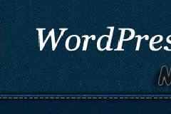 WordPress强大的多功能统计插件:My Visitors