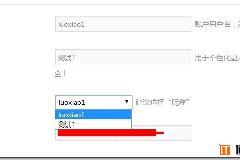 [逍遥乐教程]WordPress用户前端化专业版WP User Frontend Pro系列教程(二):个人资料增加公开显示选择昵称/用户名选项