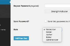 如何自定义修改WordPress默认角色的名称