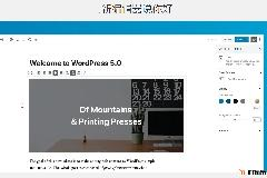 WordPress 5.0.2更新发布,提升Gutenberg编辑器性能
